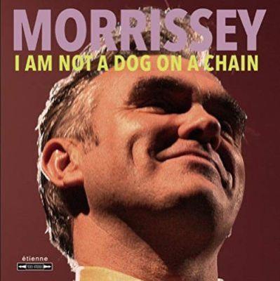 MorisseyDogOnAChain